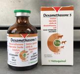 1 Dexamethasone 1